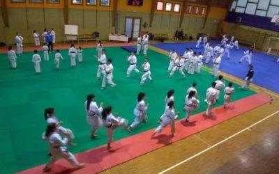 Un raduno a Piancamuno per apprendere il nuovo regolamento di Karate