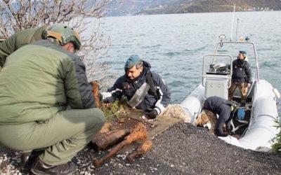 Lago d'Iseo, prosegue il recupero di ordigni bellici