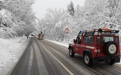 Piante pericolanti per la troppa neve sulla ss39 da Corteno all'Aprica, ma Anas non interviene: ci pensano i volontari