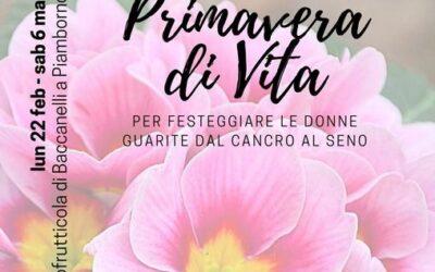 """""""Primavera di Vita"""", le primule aiutano l'Andos di Vallecamonica Sebino"""