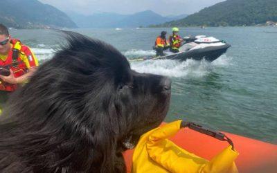 I cani bagnino della Sics al lavoro anche nel lago d'Iseo con Camunia Soccorso